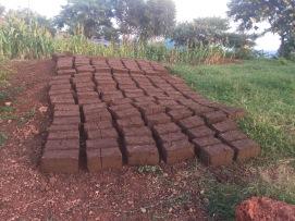Mud bricks for future houses in Rwanda